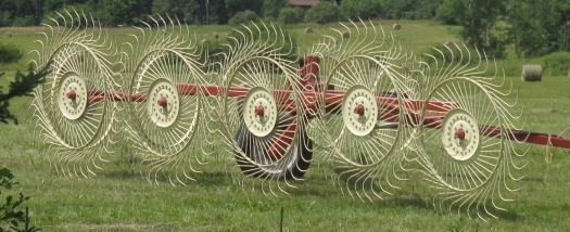 Hay Wheel-Rake by Lucy Tyrrell_IMG_1823